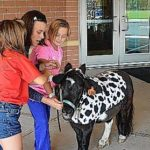 Ollie the Miniature Horse goes to school
