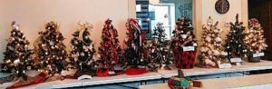 Town Hall displays Christmas trees to be auctioned