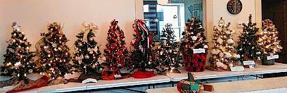 The 2017 West Liberty Christmas Tree Silent Auction is underway with 10 decorated 3-foot Christmas trees displayed at Town Hall. The event is sponsored by The West Liberty Business Association with proceeds going to the West Liberty Historical Society Opera House Renovation Project. Bidding stops Nov. 24 at 4 p.m. The winner will be called and asked to retrieve the tree Nov. 27 or 28. The trees were decorated by Theresa's Gingerbread House III, Bobbi Gratz and Cindee Boyd, the McIntosh Family, Project Teddy Bear & Friends Non-Profit, West Liberty Historical Society, Adriel Foster Care & Adoption & Family Preservation, Peoples Savings & Loan, Wygal Family, MCC Thrift, and the Barger Family.